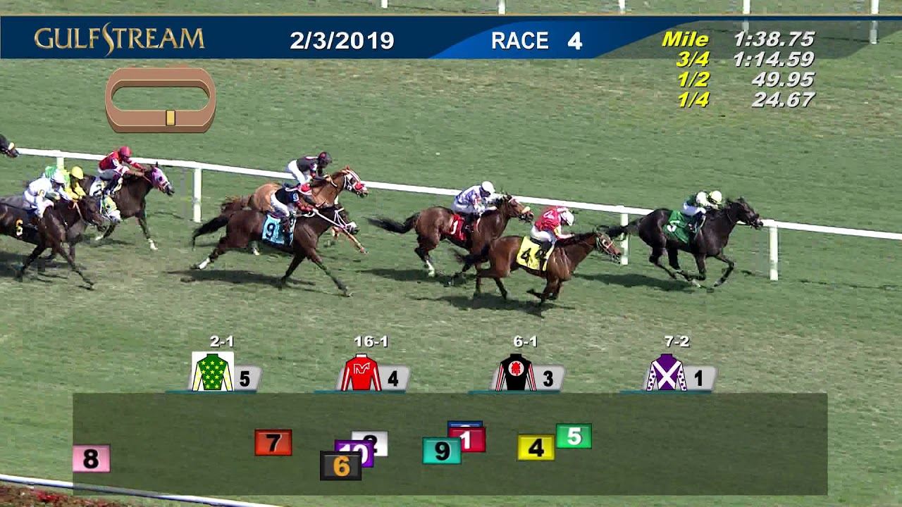 Gulfstream Park Replay Show | February 3, 2019