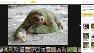 Делаем видео из фото и музыки для своего канала.Подарок бесплатная программа для создания видео.