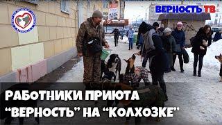 """Работники приюта """"ВЕРНОСТЬ""""  на """"Колхозке"""""""