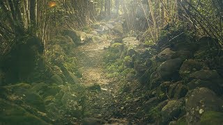 """Peaceful Relaxing Instrumental Music, Meditation Calm Music """"Sacred Places"""" by Tim Janis"""