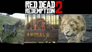 Circus Animals Stranger Mission - Red Dead Redemption 2 (He's British, of Course)