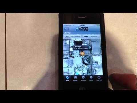 ces 2012 gps hundehalsband tagg mit iphone anbindung youtube. Black Bedroom Furniture Sets. Home Design Ideas