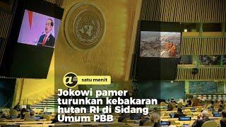 Saat Jokowi pamer ke PBB soal kebakaran hutan RI