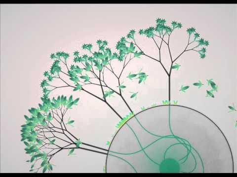 Milieu - Open [Eufloria Soundtrack]