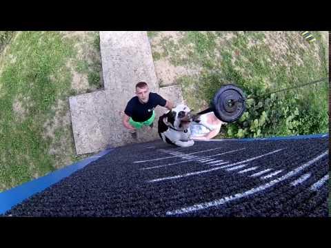 Kosicky Cvicak Best Friends - Alex - Wall Climbing-Bull Team Unstoppable-Kosice