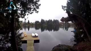 500 Woodhaven Drive - Miller Real Estate Nanaimo - Airborne Video Photography