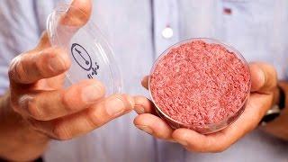 Lab-Grown Burgers Just Got A LOT Cheaper!