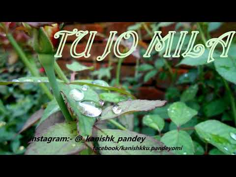 TU JO MILA | By Kanishk Pandey.... Original Song From Bajrangi Bhaijan by Kk....