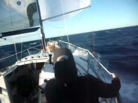 Yacht sailing fast downwind offshore