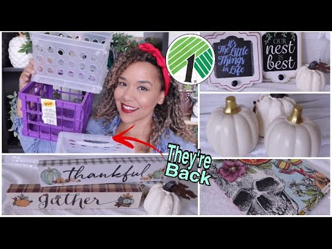 DOLLAR TREE HAUL July 2019 New Finds Cube Organizers are BACK!
