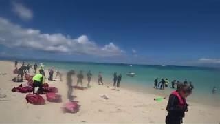 ミコマスケイの撮影動画です。 最初の方は水滴で一部ぼやけています。 s...