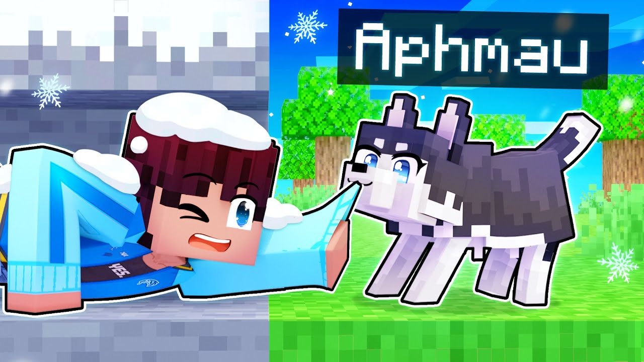 Download Playing As A BRAVE Husky In Minecraft!
