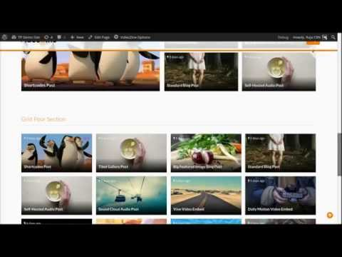 ThemePacific Page Builder for VideoZine - Video WordPress Theme