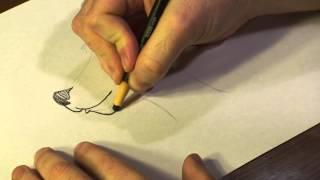 How to Draw Cartoon Kangaroo Faces
