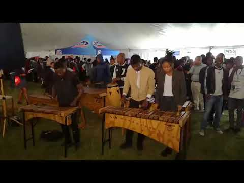 Link pharmacy event #marimba bands