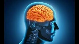 جلسة تنقية العقل اللاواعي من السلبيات بذبذبات عالية مع توكيدات ترفع من مستوي الأستحقاق