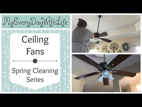 🍃 Ceiling Fans || Spring Cleaning Series 2018🍃