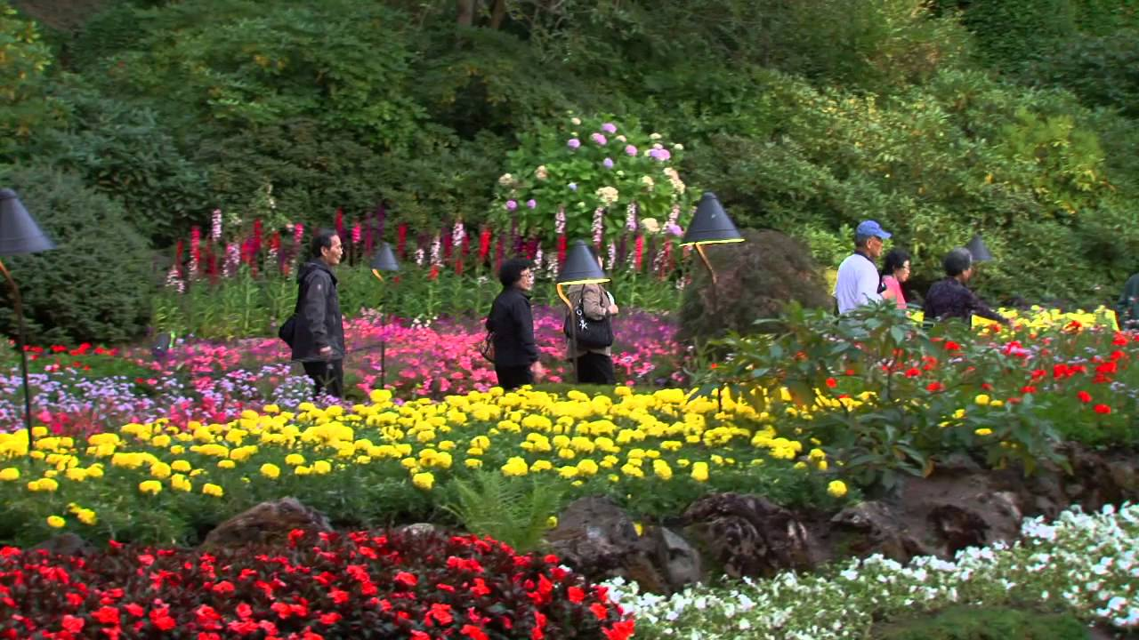 Enchanting Butchart Gardens Evening Youtube