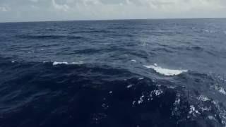 Dark Blue Ocean Waves Free 4K Footage