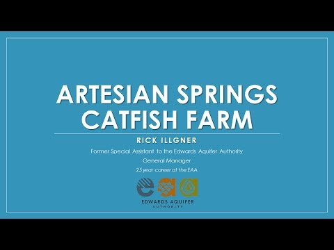 Artesian Springs - The Catfish Farm Well