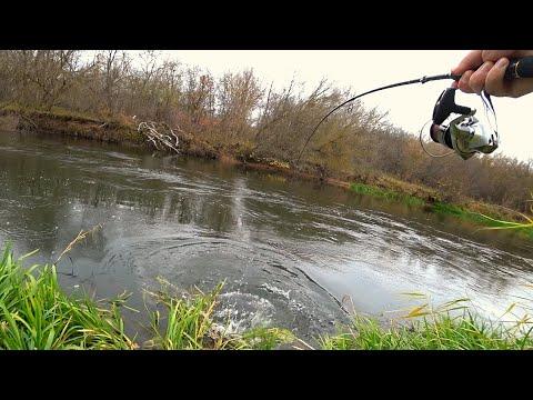 ШОК, ТАКОГО СО МНОЙ ЕЩЁ НЕ БЫЛО. Щуки красивой лесной реки! Рыбалка на спиннинг