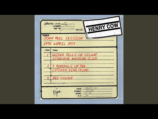 Bee (John Peel Session)