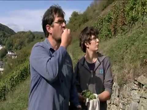 Lahnweingut - Weinschänke Massengeil-Beck - Obernhof