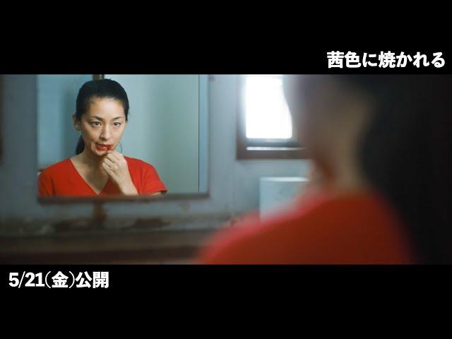 映画予告-尾野真千子、ただならぬ様子で真っ赤な口紅を塗る…『茜色に焼かれる』本編映像