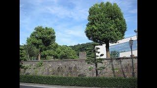 【鹿児島ガイド】わたくし的「西郷どん紀行」第26回 西郷さん、大久保さんが協力して創設した私学校