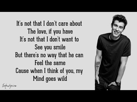 Roses - Shawn Mendes (Lyrics) 🎵