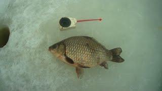 Ловля карася на мормышку! Зимняя рыбалка.