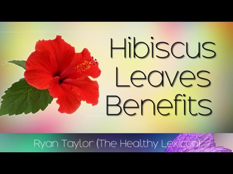 Hibiscus Leaves: Benefits and Uses