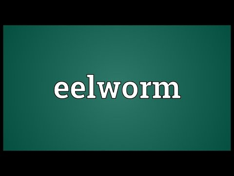 Header of eelworm