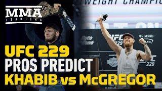 UFC 229: Pros Predict Khabib Nurmagomedov vs. Conor McGregor - MMA Fighting