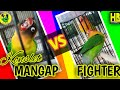 Audio Konslet Minor Fighter Konslet Mangap Full Masteran Love Bird Juara  Mp3 - Mp4 Download