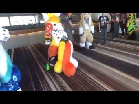FWA 2016 Vlog