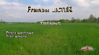 Frambos LECTER - Ślady / Tropienie - CITYDOG