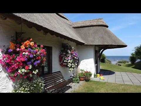 Summer At The Cottages Ireland
