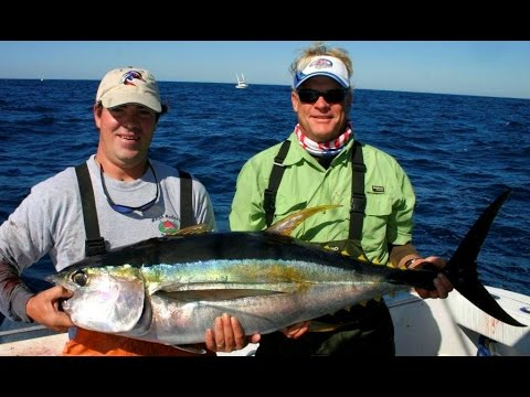 Deep sea fishing for yellowfin tuna and wahoo in venice for Best time to go deep sea fishing in the gulf