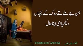 punjabi shayari     Hun jay milay tey rok ke pochan     Punjabi poetry
