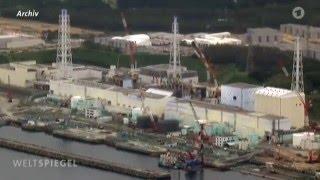 Japan Fukushima: Reise durch die Apokalypse, 5 Jahre nach dem Supergau (06.03.2016 Weltspiegel)