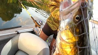Рыбалка на Днепре. Троллинг.(День, проведенный на воде от и до. Ловили в основном троллингом. Но и побросаться в жерешека, когда тот бил,..., 2014-08-31T22:45:53.000Z)