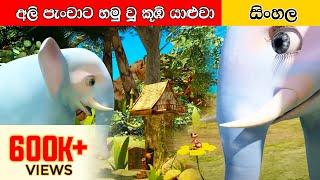අලි පැංචාට හම්බුන කූඹි යාළුවා Sinhala Cartoon   Surangana Katha   4K UHD   Sinhala Fairy Tales