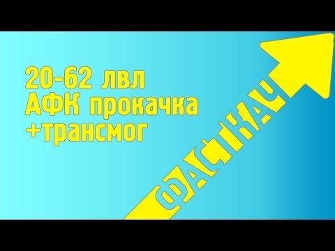 ФАСТПРОКАЧКА 20-62 лвл АФК! ФАРМ ТРАНСМОГА И РЕДКОГО ПЕТА