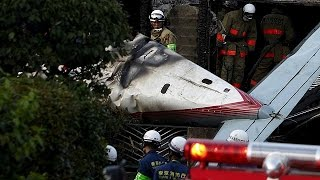 Small plane crash in Tokyo suburb leaves three dead