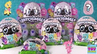 Hatchimals CollEGGtibles Surprise Egg Opening Limited Edition Toy Review | PSToyReviews