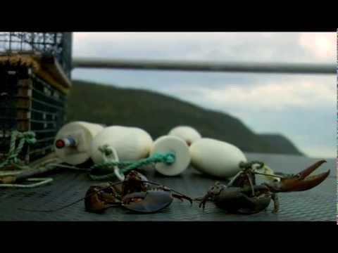 Visit Nova Scotia - Canada's Majestic Ocean Playground!