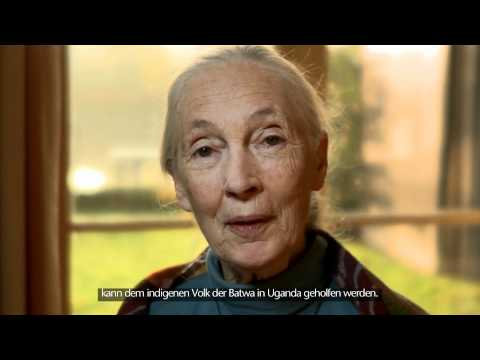 """Jane Goodall: """"Reasons for Hope"""" Sustainably Packaged DVD"""