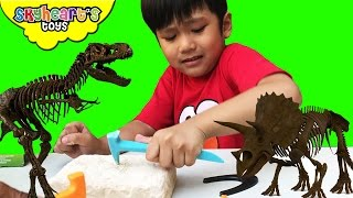 Toddler Digging Dinosaur Bones - Dr Steve Hunters Excavation toys for kids Spinosaurus Triceratops