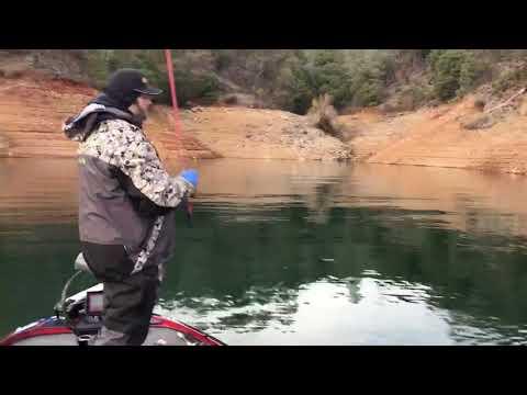 Lake Shasta Fishing Report Ron Howe